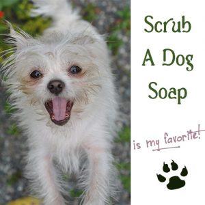Botanical Bliss Scrub A Dog Soap